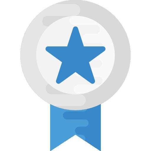 medalla de plata  icono gratis