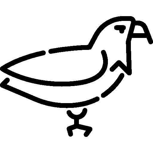 Eagle  free icon