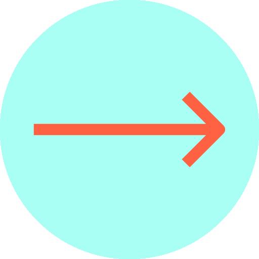 seta direita  grátis ícone